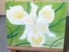Iris des marais Resized